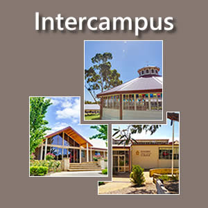Intercampus Studies